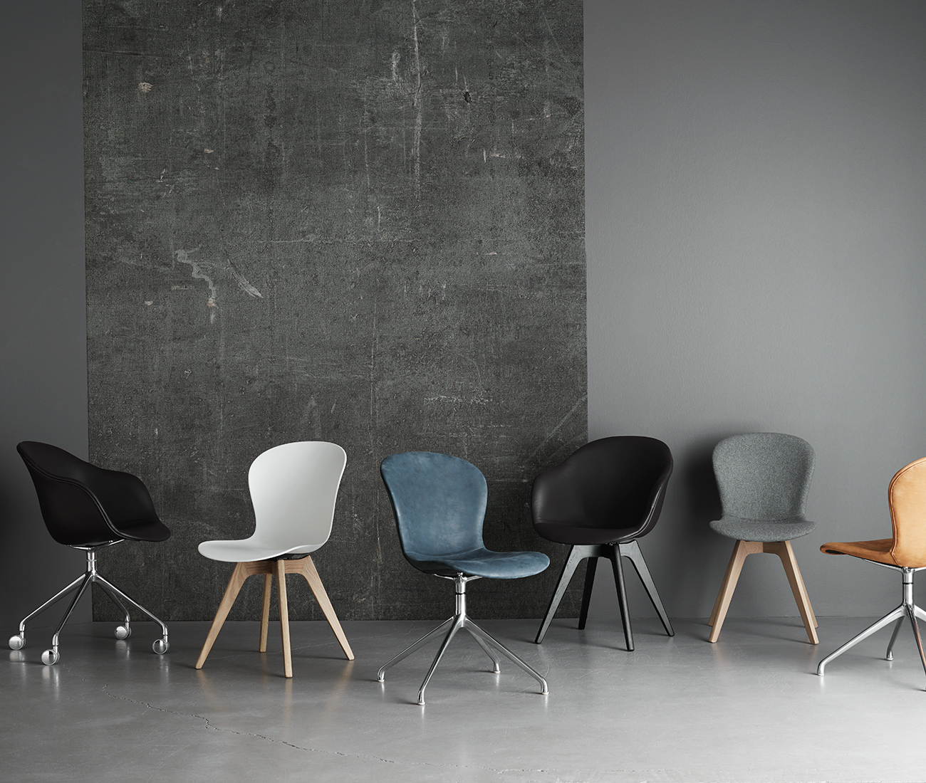Adelaide chairs in different style and colour