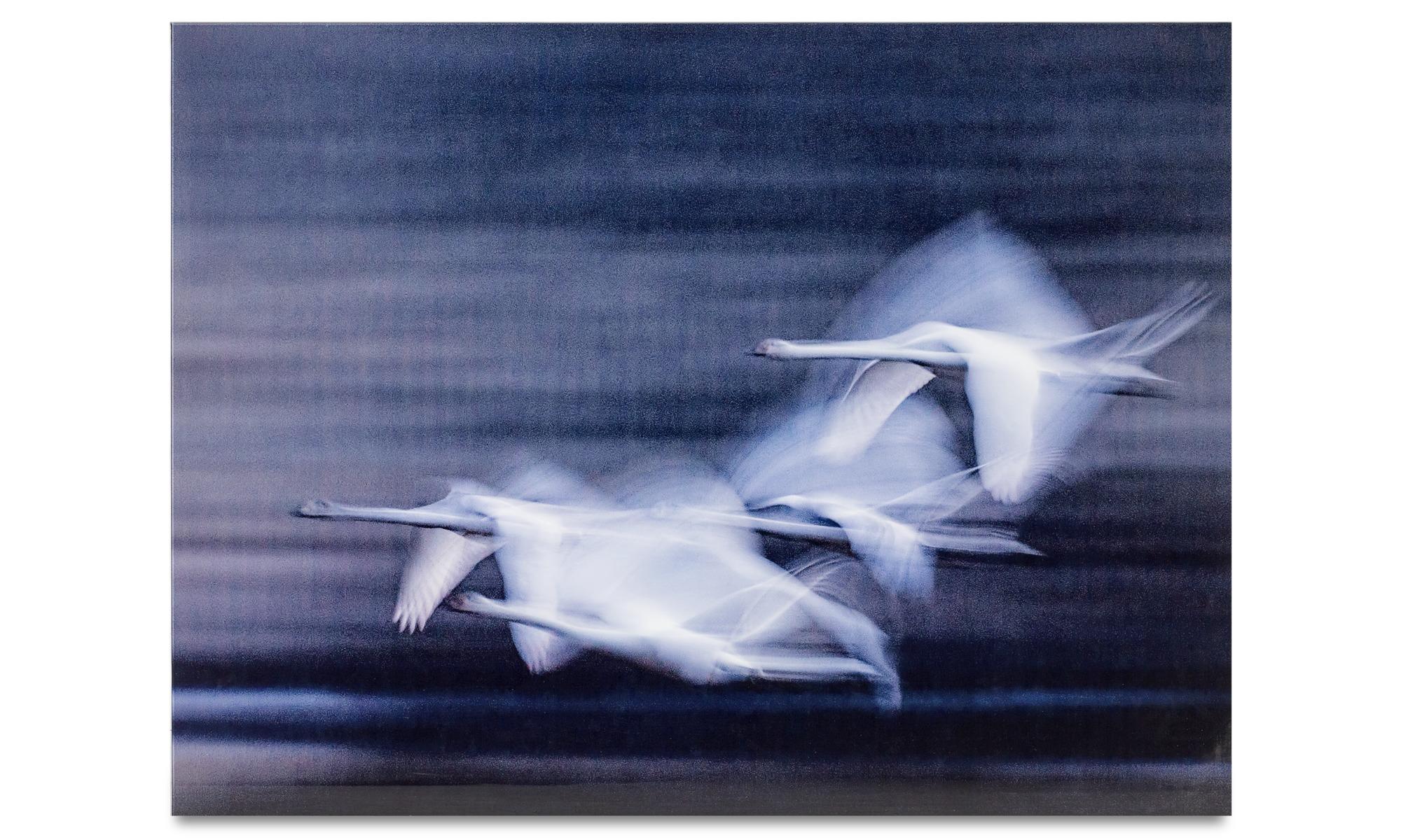 Tavlor - Swans glaskonst - Glas