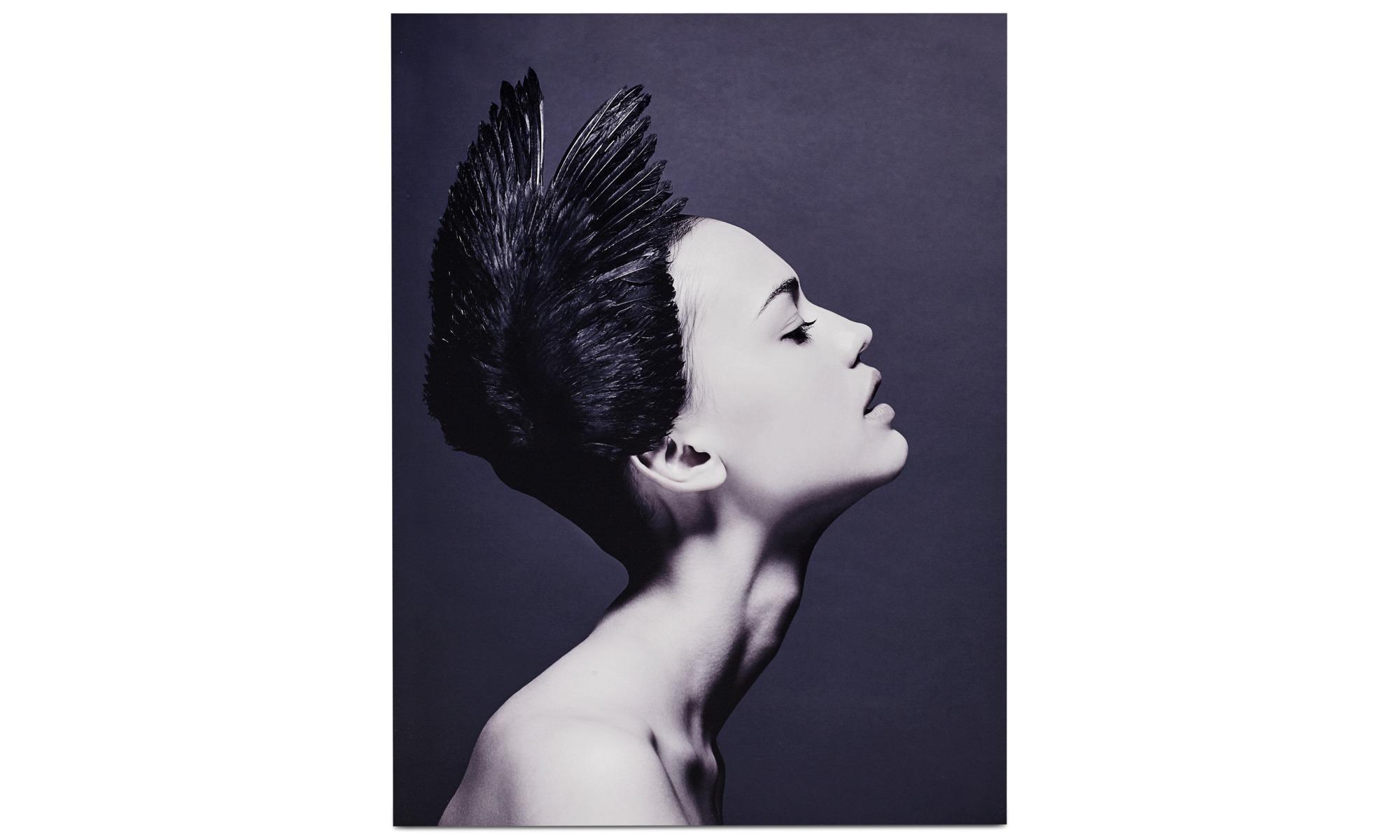 Tavlor - Black swan metalltryck - Metall