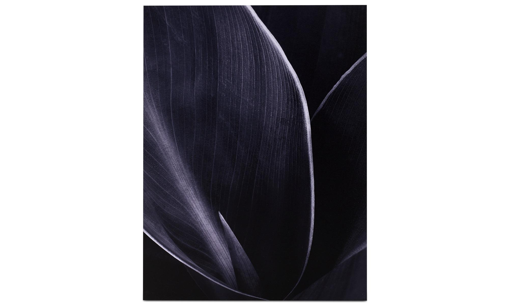 Tavlor - Green is Black metalltryck - Metall