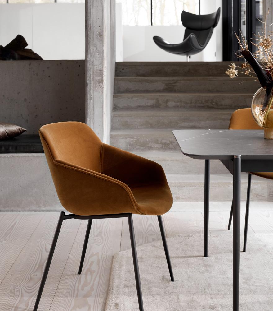 Vienna chair in camel cotton velvet with matt black legs