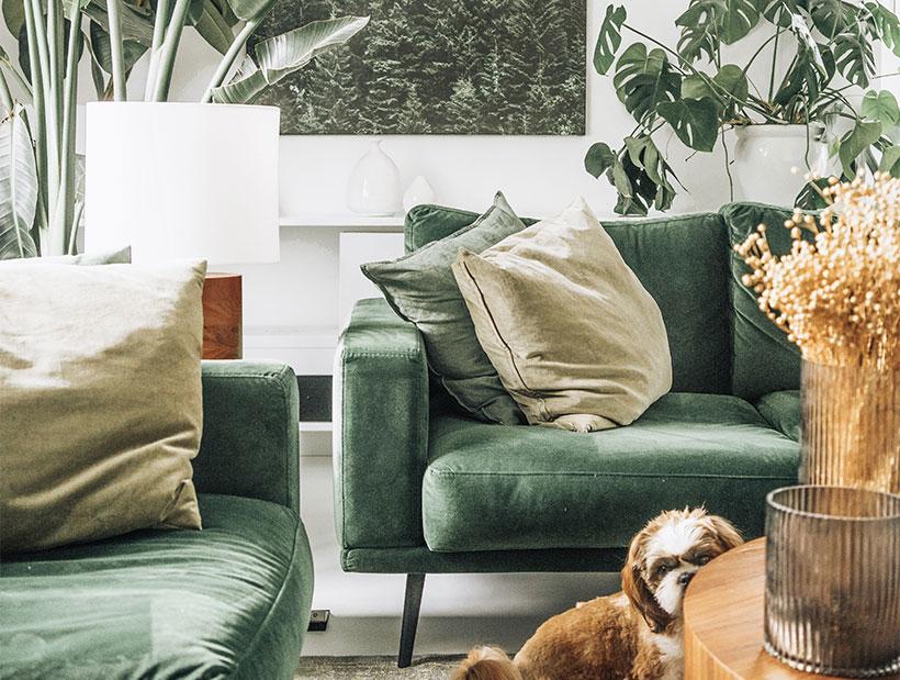 Vihreällä sametilla verhoiltu sohva